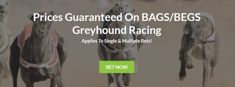 Bruce Betting Greyhounds Offer