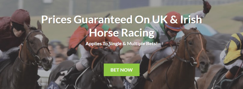 Bruce Betting Horse Racing Offer